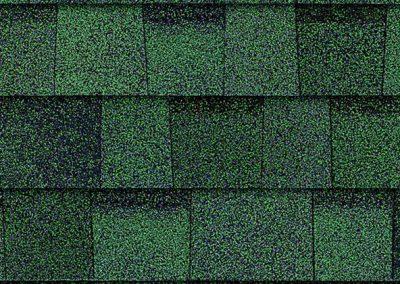 TruDefinition™ Duration® Shingle Chateau Green